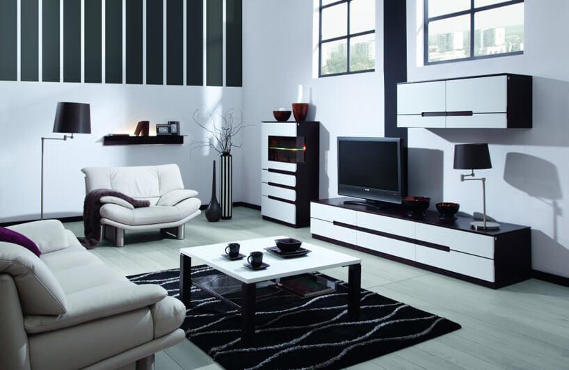 biało czarne meble wjasnym salonie