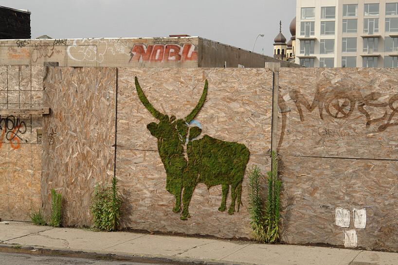 zielony byk ztrawy na drewnianej płycie