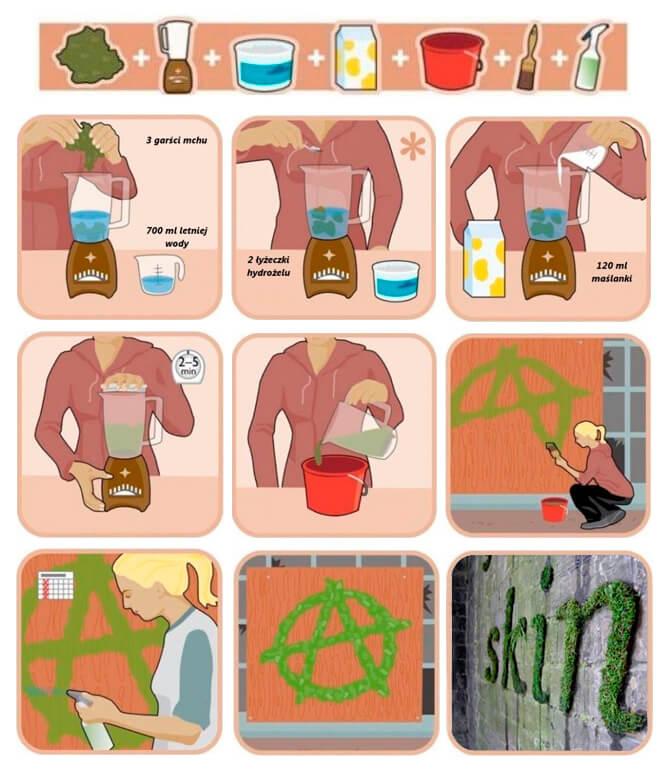 proces przygotowywania zielonego pasa