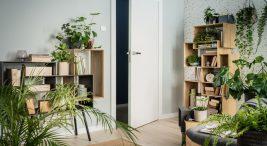 białe drzwi we wnętrzu zdużą ilością zielonych roślin