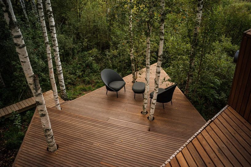 Projekt domu skrytego pośród drzew od Maidla Nature widok na taras