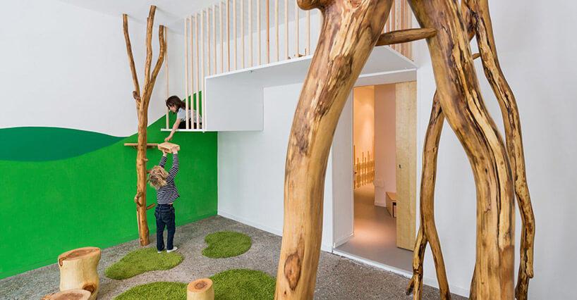 przedszkole drzewo