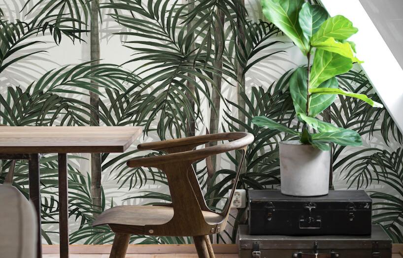 fototapeta Botany Bamboo Green las bambusów jao tło wyjątkowego drewnianego krzesła