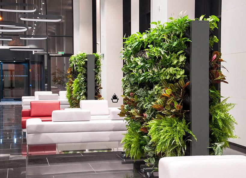 duzą dwustronna donnica do ogrodu wertykalnego wprzestrzeni biura