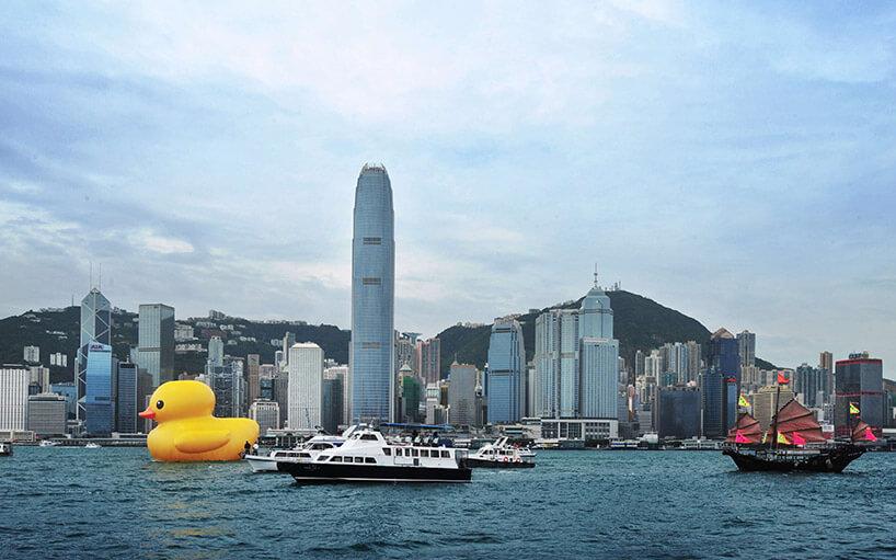 dmuchana ogromna żółta kaczka płynąca rzeką
