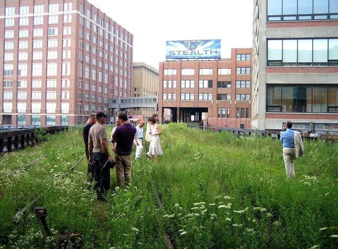 ludzie na trawniku