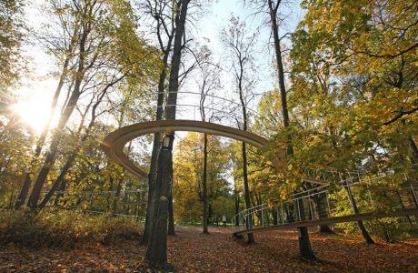 ścieżka podwieszona do drzew