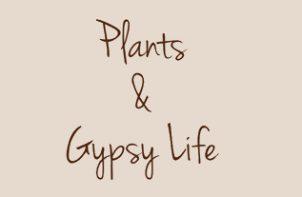 logotyp Plants & gypsy life