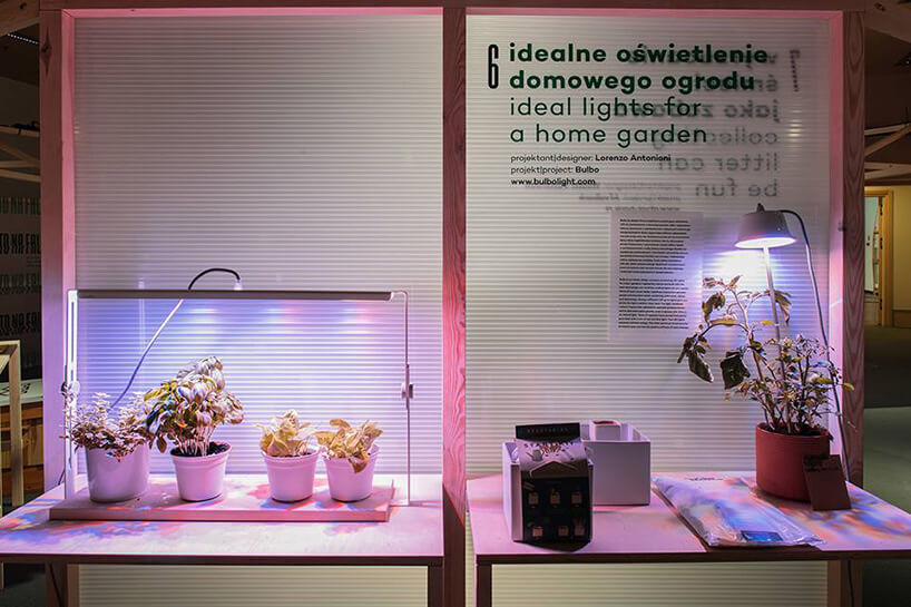 stoisko ze specjalnym oświetleniem dla roślin