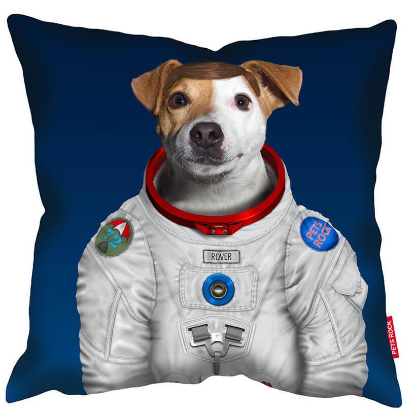 pies przeprany kosmonaute