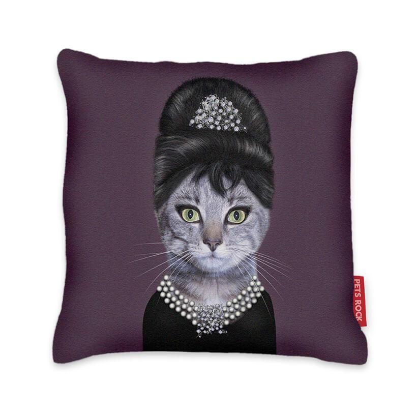 kot przebrany za kobietę