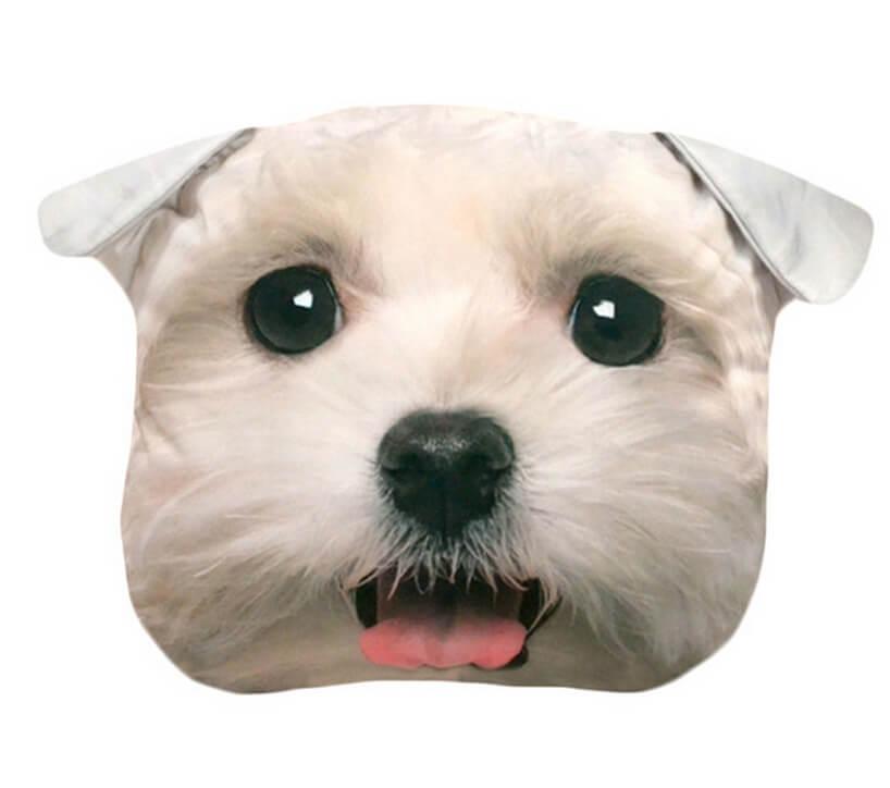 głowa białego psa na poduszce