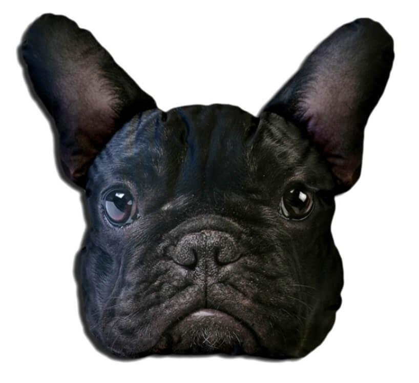 głowa czarnego psa na poduszce