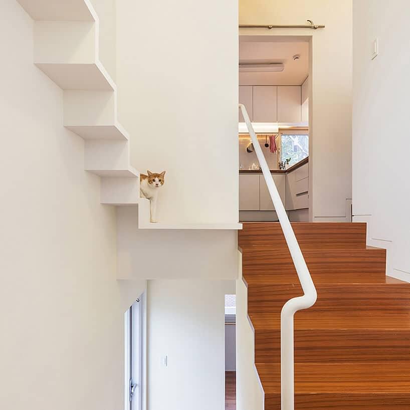 dom zbiała klatką schodową zdrewnianymi stopniami