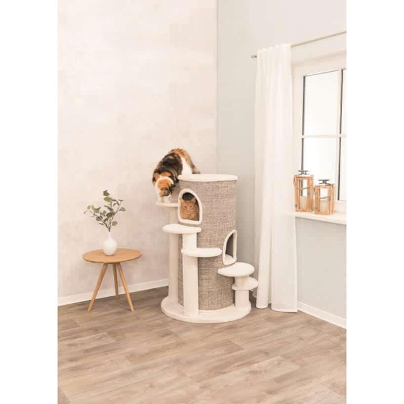 duże legowisko dla kotów ze schodami oraz brązowym materiałem