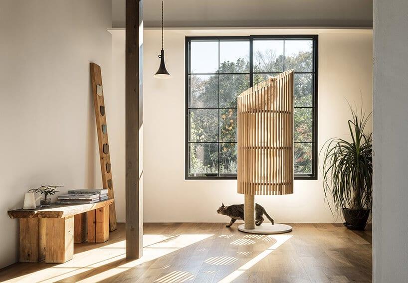 bambusowy wysoki drapak dla kota przy dużym oknie