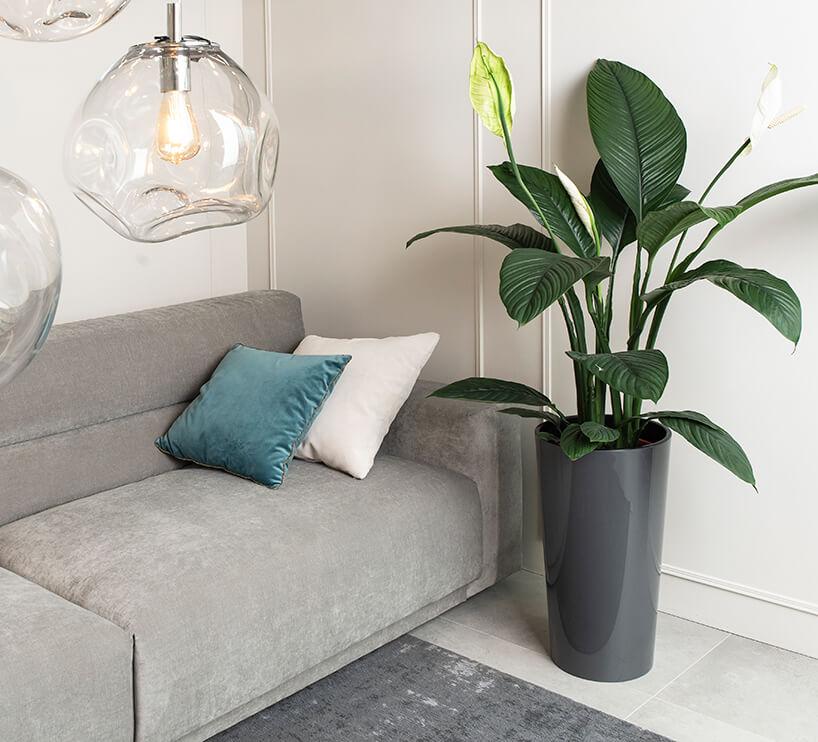 szara sofa Rosanero pod lampami wiszącymi znieregularnym kloszem