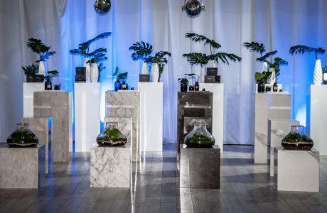 marmurowe doniczki z kwiatami na tle białych firanek na szarej podłodze