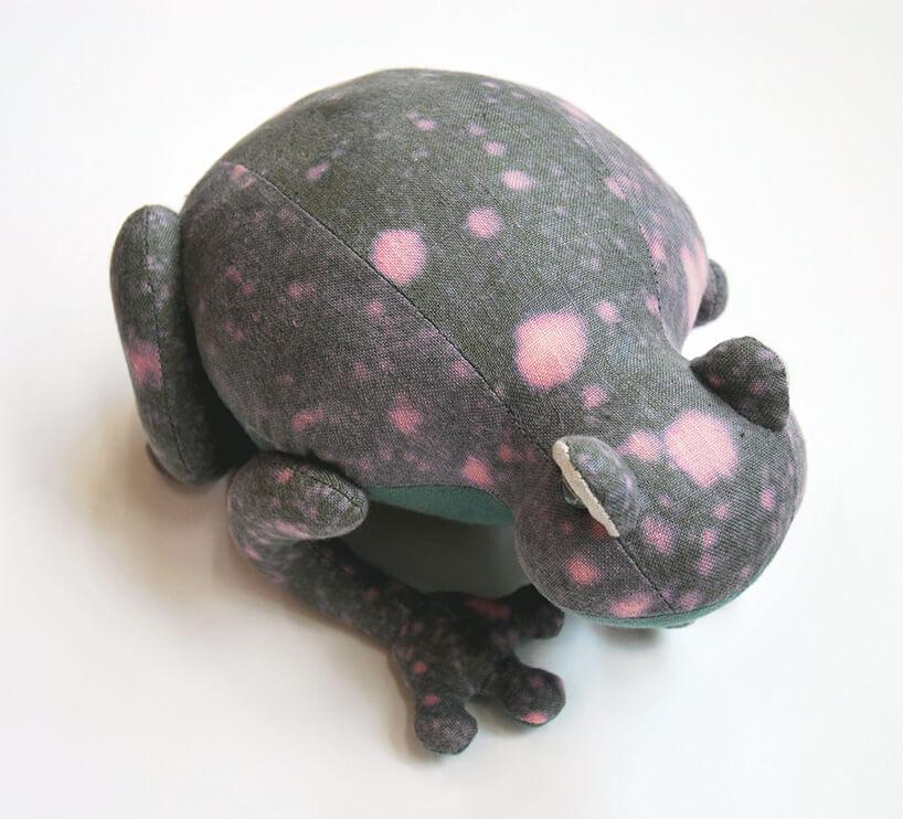 szara żaba wróżowe plamki