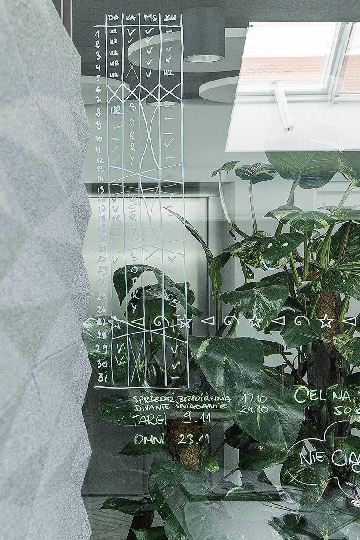 nowoczesna przestrzeń biurowa zszarą ścianą szklaną ściana idużą liczbą roślin