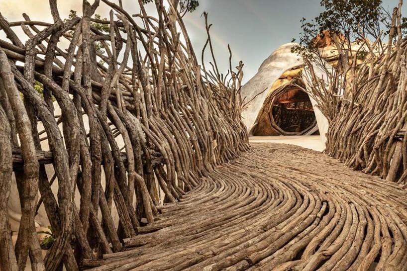 ścieżka zdrewnianych grubych gałęzi