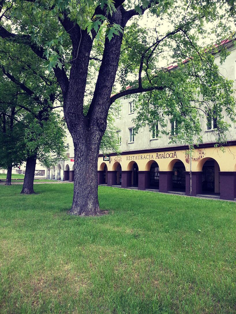 modernistyczna kamienica zpodcieniami obok parku