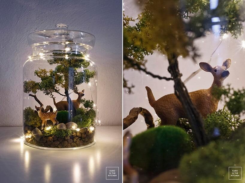 las wsłoiku zielona roślina