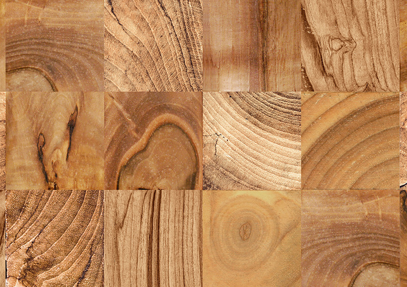tapeta imitująca drewno zprofili