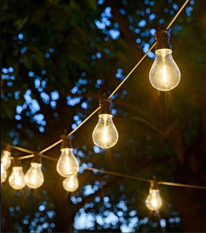sznur żarówek od Luminalpark na tle drzewa wieczorem
