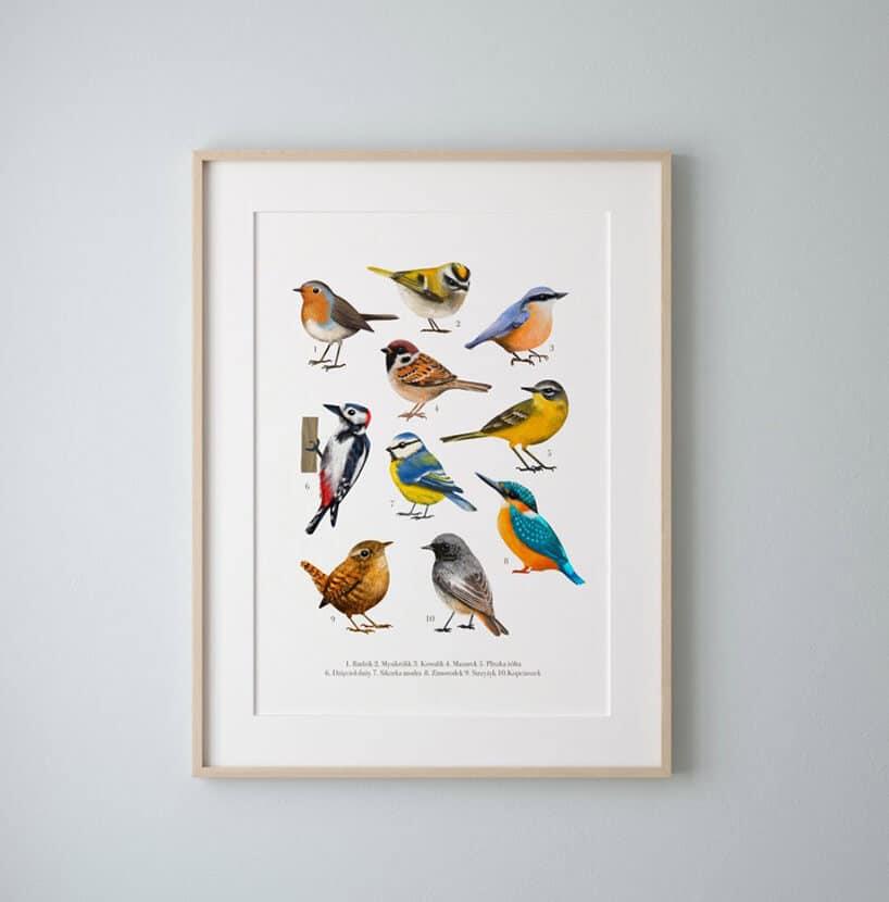 biały obraz zkolorowymi ptakami wbeżowej ramce