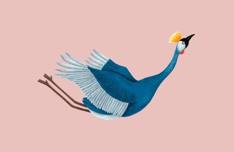 grafika niebieski ptak podczas lotu na różowym tle