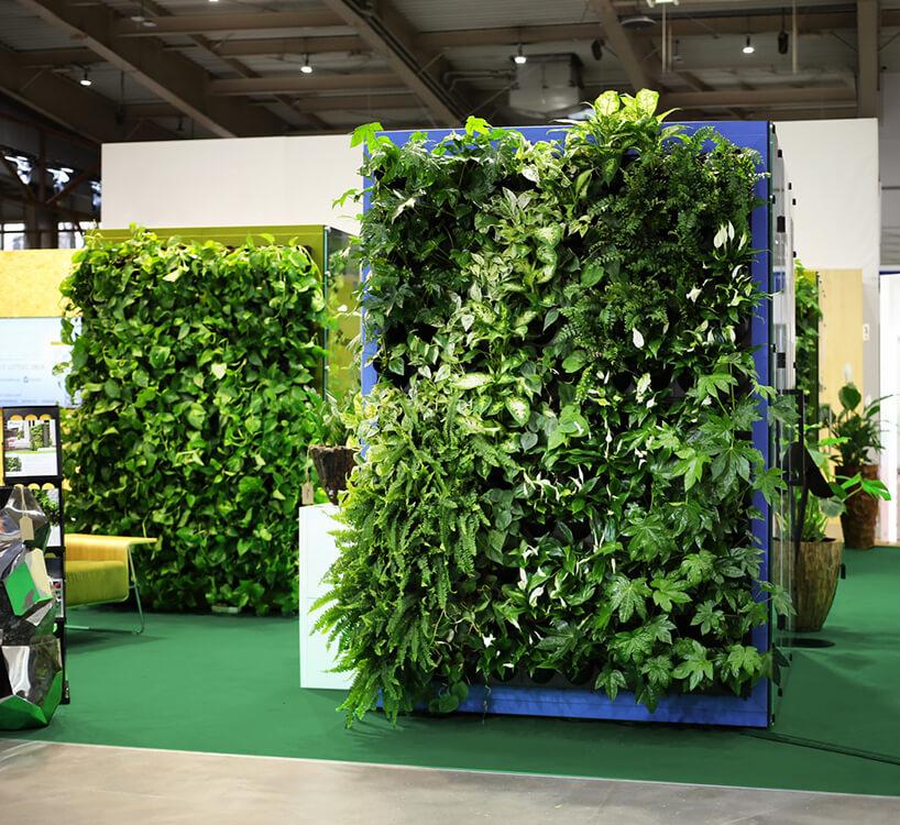 ścianki boxów akustycznych VANK_WALL JUNGLE ze ścianami osłoniętymi zielonymi roślinami
