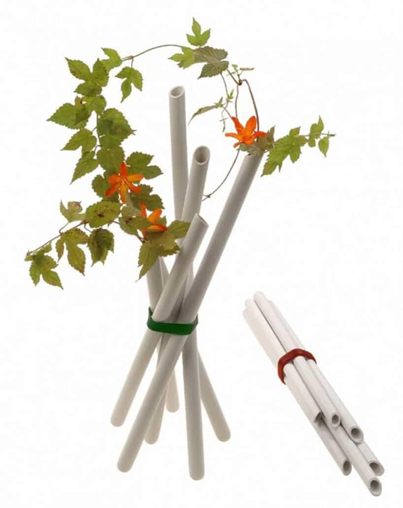 snopek wąskich wazoników zzielonymi roślinami