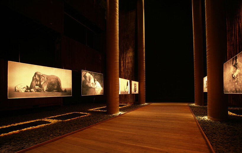 ciemne brązowe wnętrze nomadycznego muzeum