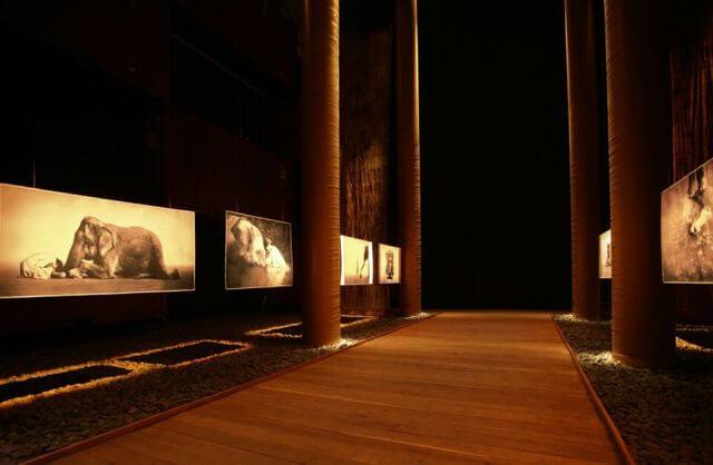 wnętrze wędrownego muzeum