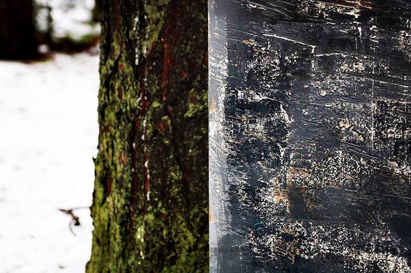 obdrapana ścina wzestawieniu zpniem drzewa