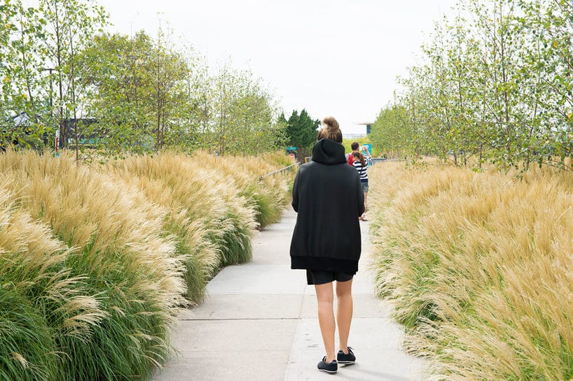 kobieta spacerująca po kamiennych płytach pośród wysokich traw
