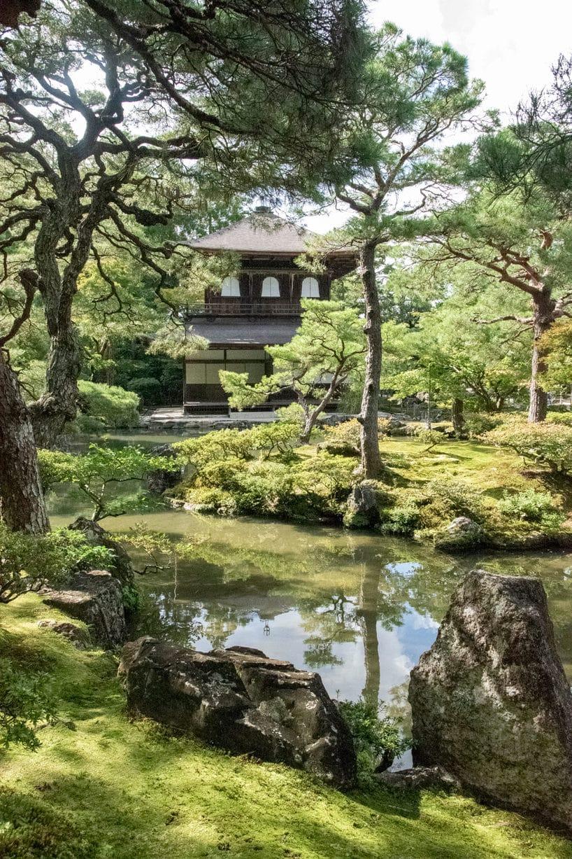 klasyczna budowla japońska po środku klasycznego japońskiego ogrodu