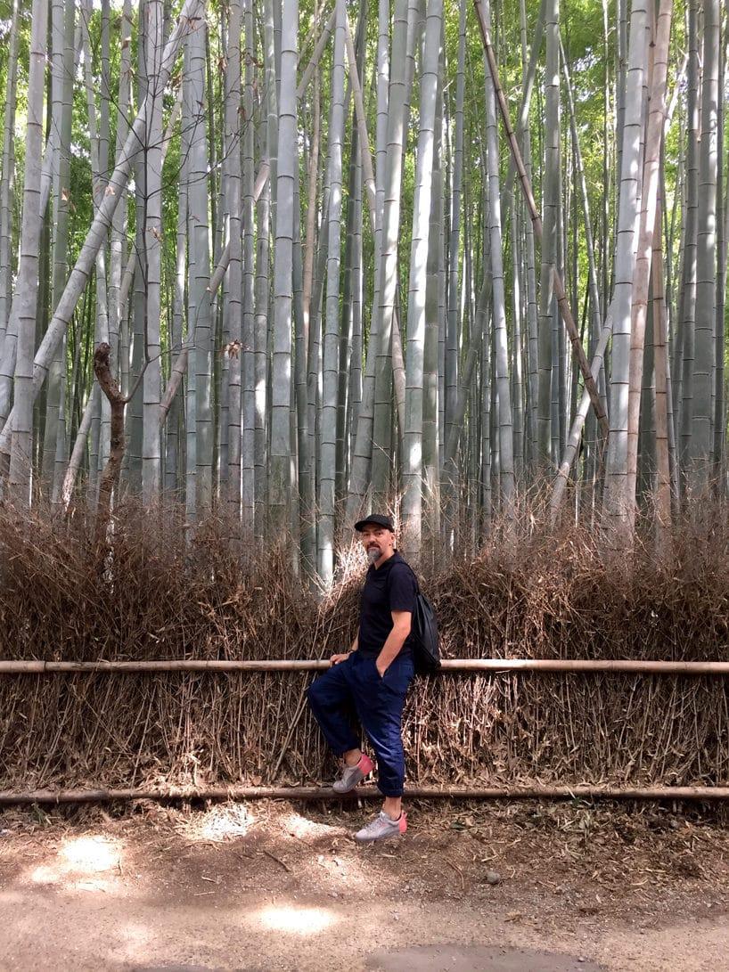 mężczyzna na le bambusowego lasu