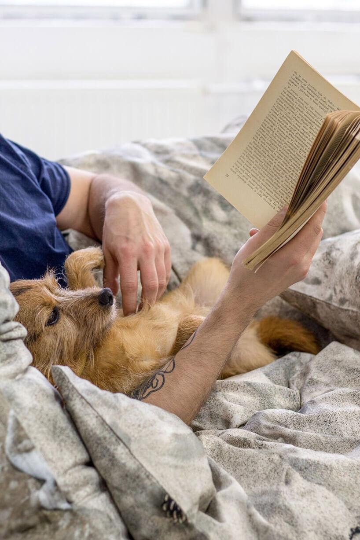 człowiek głaszczący psa iczytający książkę