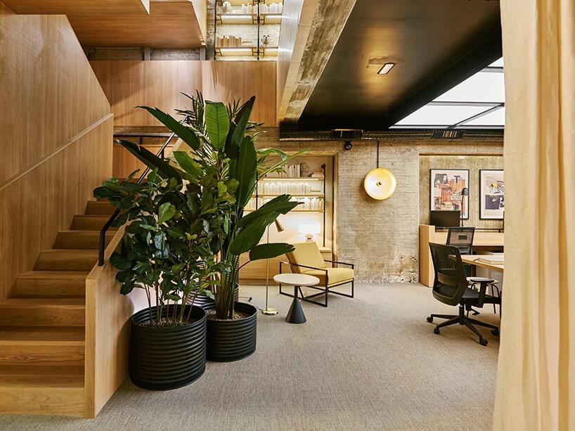pomieszczenie zułożoną jasno szara wykładziną oraz elemntami drewnianymi oraz zielonymi roślinami