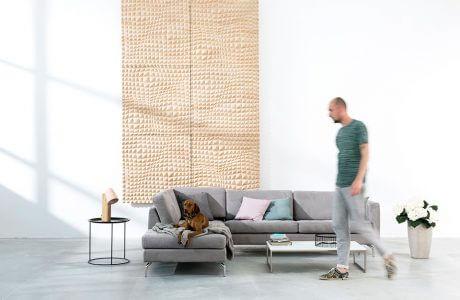 mężczyzna przy szarej sofie z psem