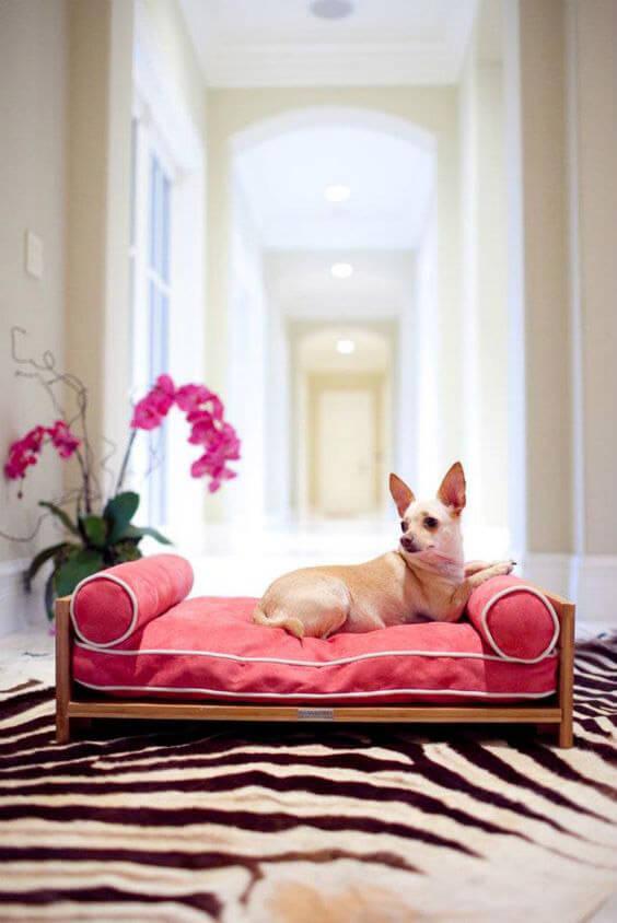 mały pies na różowym legowisku