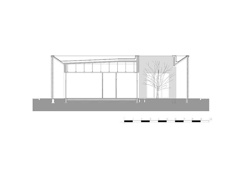 projekt ogrodu zdrzewem