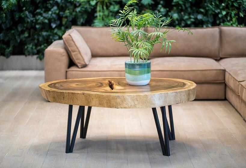 stolik kawowy zlitego drewna na czarnych nogach na tle zieleni oraz beżowej kanapy