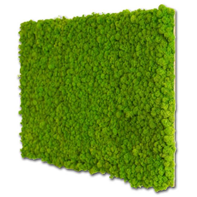 zielony panel zmchu