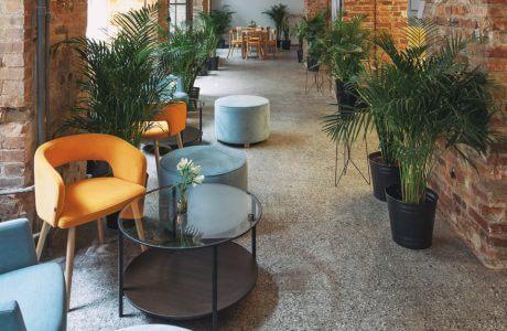 pomarańczowe krzesło przy zielonych roślinach w surowym wnętrzu