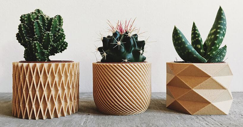 kaktusy wdonicach zdrukarki 3D